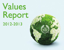 VALUES REPORT 2012-2013